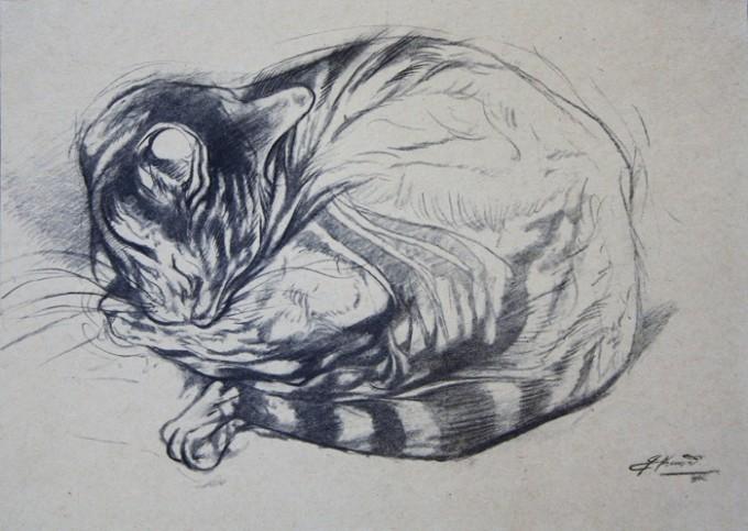 Cat Study V