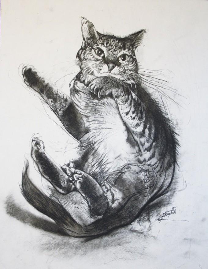 Cat Study II