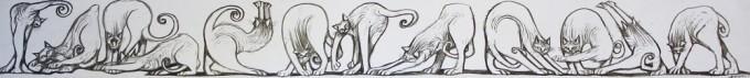 Twelve Cats