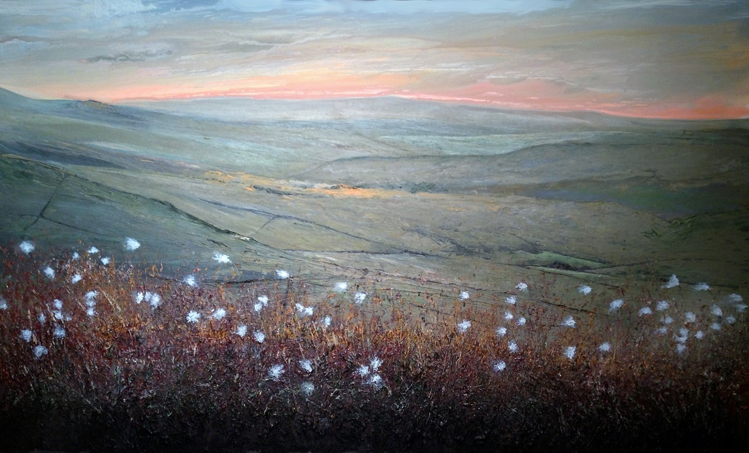 Cotton grass on Cats Tor